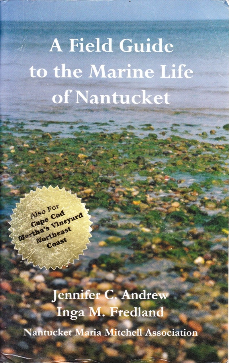 Image for A Field Guide to the Marine Life of Nantucket