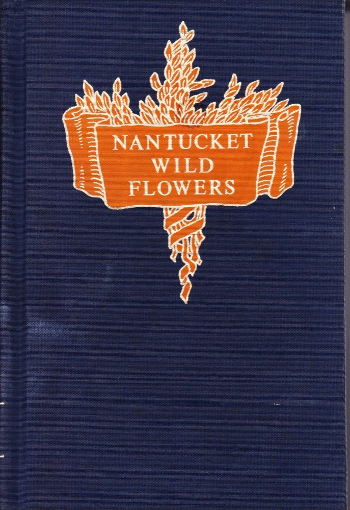 Image for Nantucket Wild Flowers